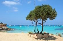 Mare Formentera