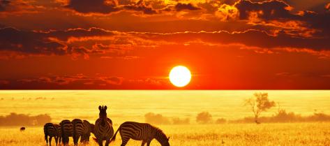 African-Photo-Tour
