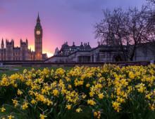 Primavera-a-Londra3